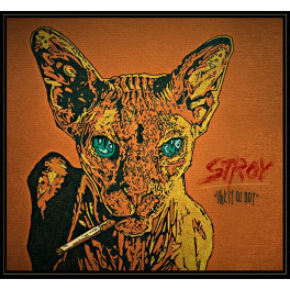 Stroy - Like It Or Not (CD 2016)